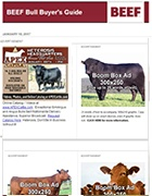 beef-bull-buyers-guide140x180-graphic-for-marketing-website