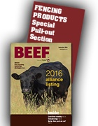 BEEF Fencing Guide